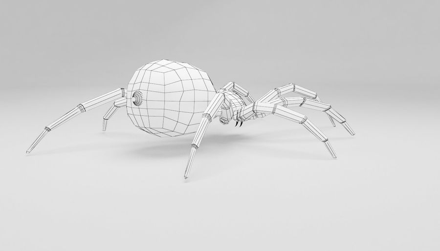 Wolf Spider royalty-free 3d model - Preview no. 13
