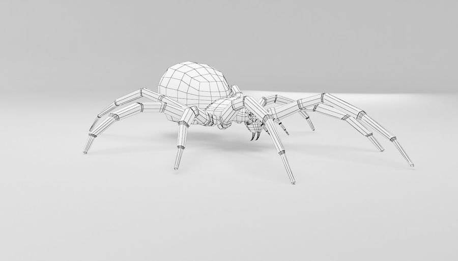 Wolf Spider royalty-free 3d model - Preview no. 15