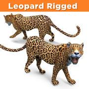 Aparejo leopardo modelo 3d