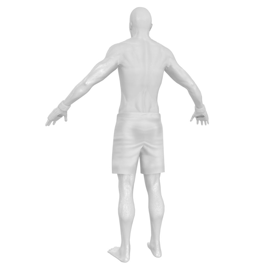 MMA Fighter N3 royalty-free 3d model - Preview no. 24