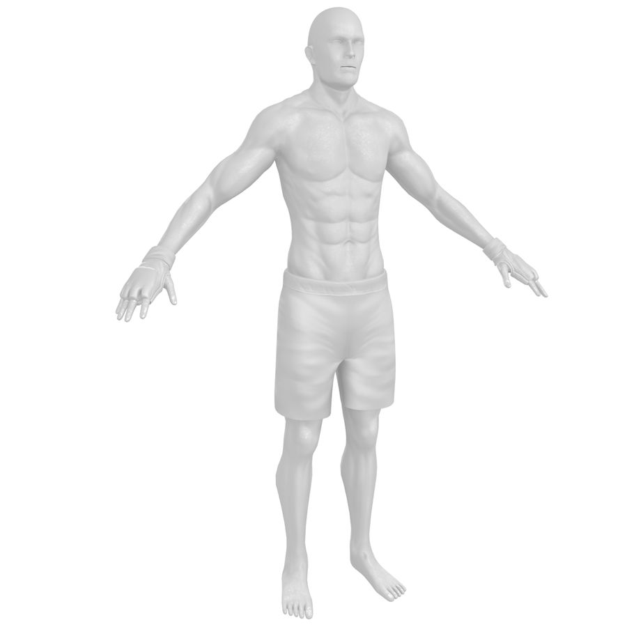 MMA Fighter N3 royalty-free 3d model - Preview no. 22