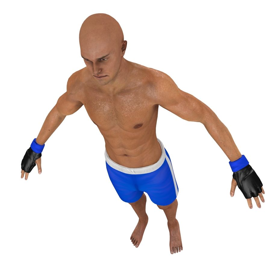 MMA Fighter N3 royalty-free 3d model - Preview no. 20