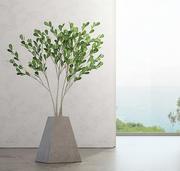 Pianta da interno in vaso di cemento. 3d model