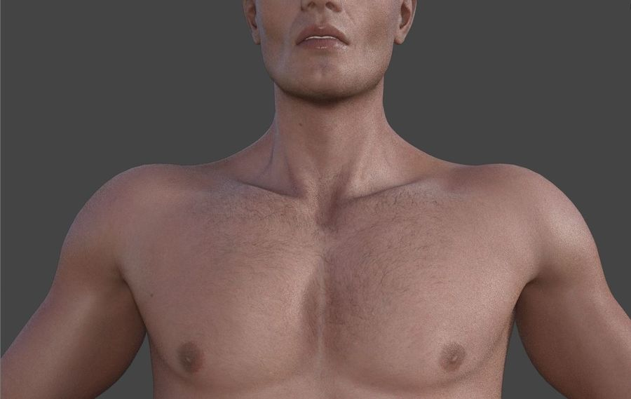 Körper männlich royalty-free 3d model - Preview no. 6