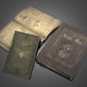 Bücher 01 (Antiquitäten) - PBR Game Ready 3d model