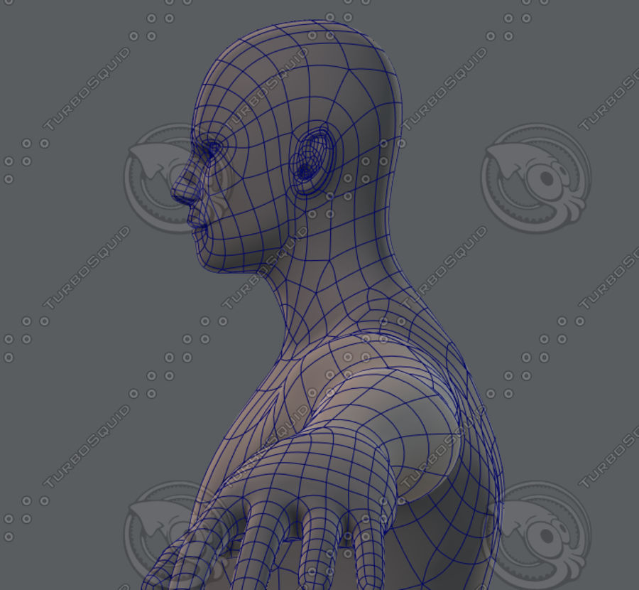 Base mesh man character royalty-free 3d model - Preview no. 50