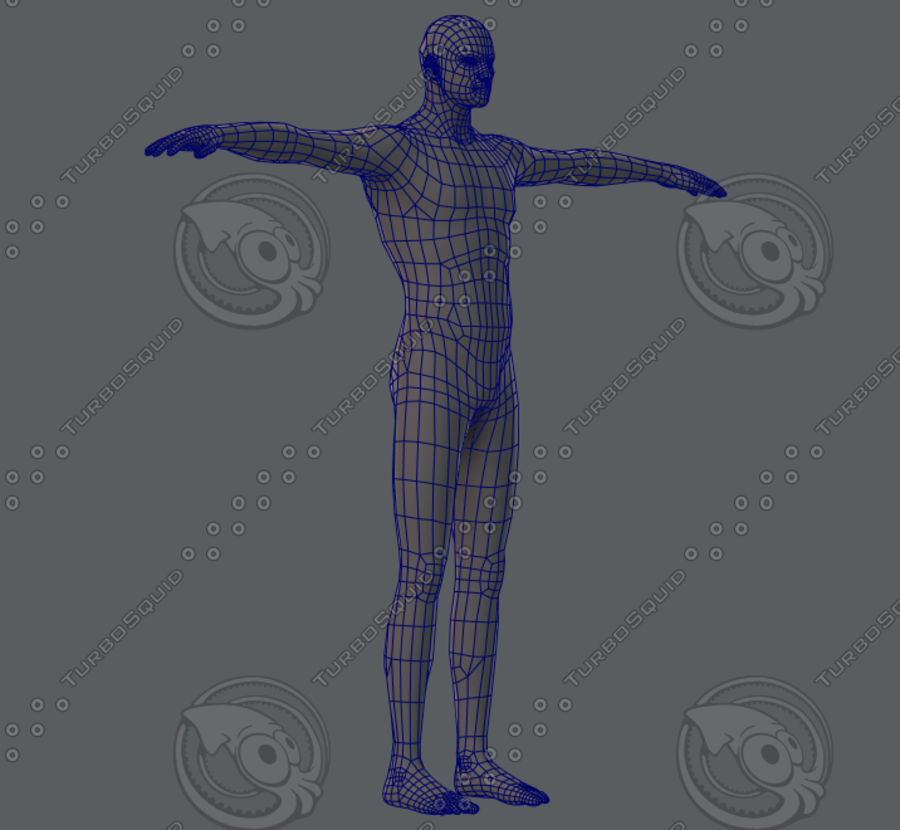 Base mesh man character royalty-free 3d model - Preview no. 29