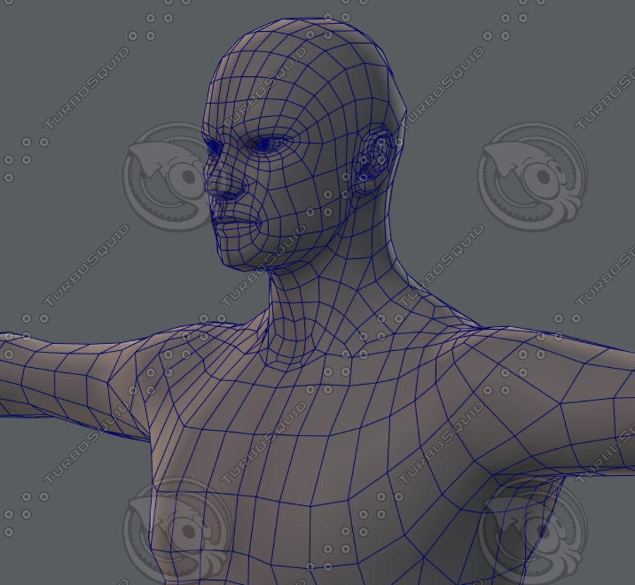 Base mesh man character royalty-free 3d model - Preview no. 67