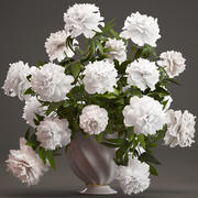 Bouquet white Peonies 3d model