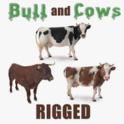 Rigged Bull and Cows Collection 3d model