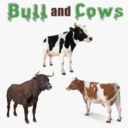 Collectie stier en koeien 3D-modellen 3d model