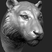 Cabeza de tigre modelo 3d