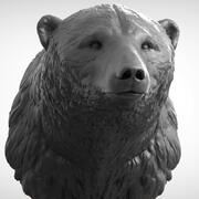 Głowa niedźwiedzia polarnego 3d model