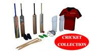 Cricket items 3d model