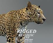 léopard (truqué) 3d model