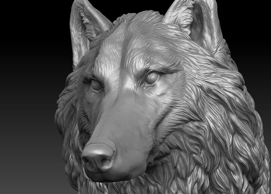 Kurt kafası royalty-free 3d model - Preview no. 8