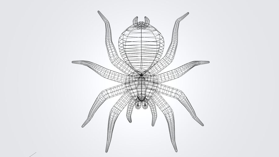 Spider-tarantula (Theraphosidae) royalty-free 3d model - Preview no. 14
