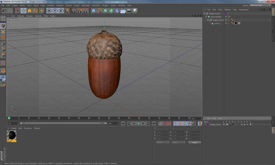 Single Acorn royalty-free 3d model - Preview no. 12