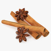Stick Cinnamon And Star Anise Spice 3d model