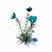 Fiore selvaggio 3d model