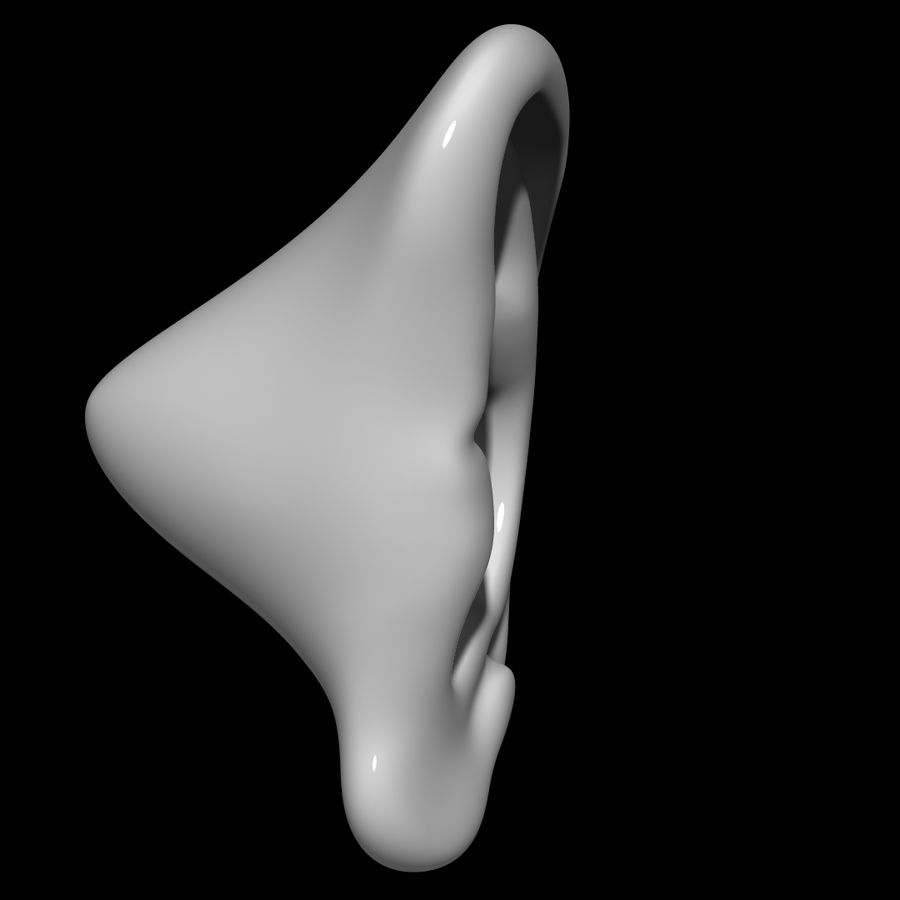 Oreille royalty-free 3d model - Preview no. 3