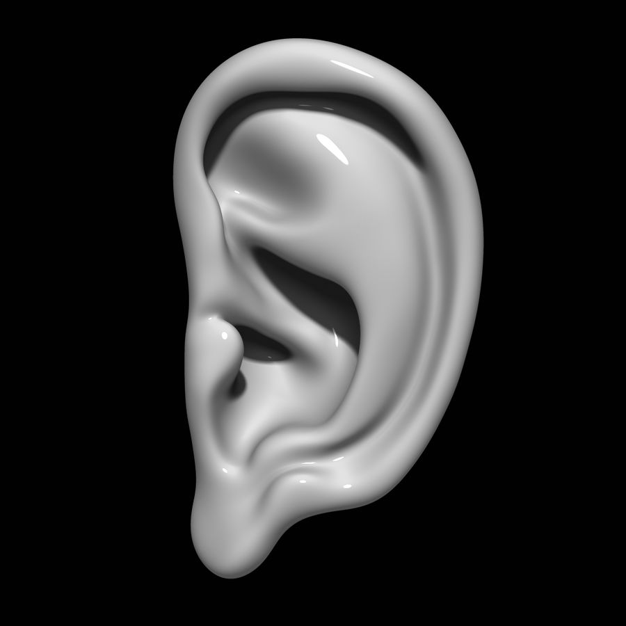 Oreille royalty-free 3d model - Preview no. 1