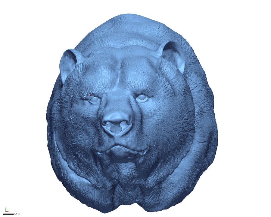 Cabeça de urso pardo royalty-free 3d model - Preview no. 2