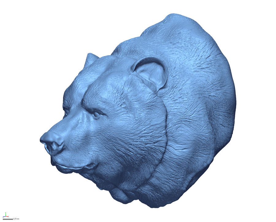 Cabeça de urso pardo royalty-free 3d model - Preview no. 1