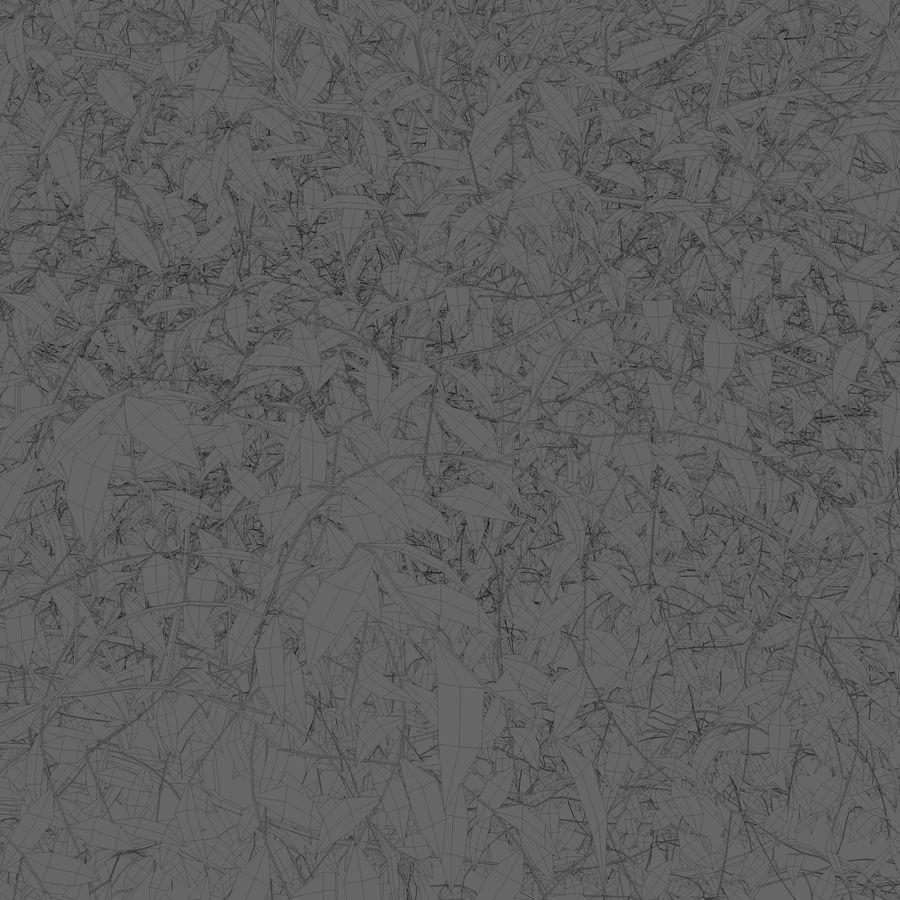 Yaprak döken ağaç royalty-free 3d model - Preview no. 3