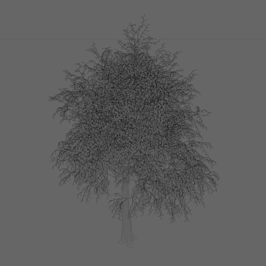 Árbol de hoja caduca royalty-free modelo 3d - Preview no. 2