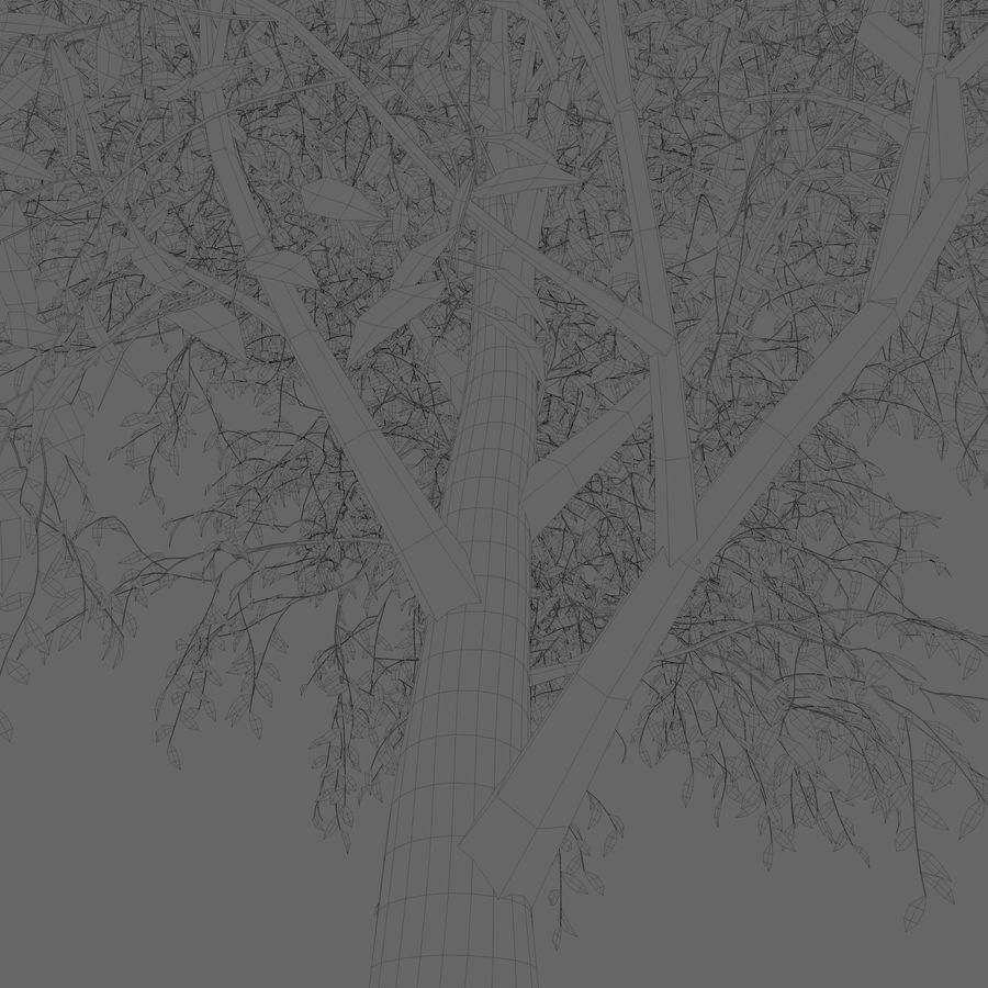 Árbol de hoja caduca royalty-free modelo 3d - Preview no. 6