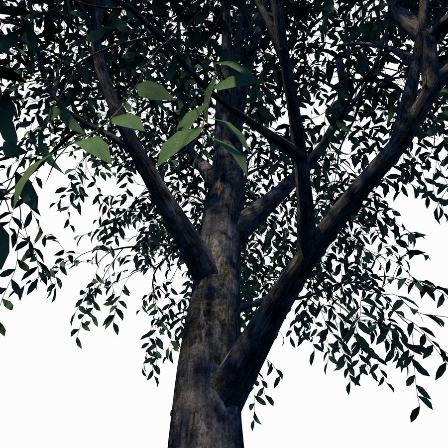 Árbol de hoja caduca royalty-free modelo 3d - Preview no. 5