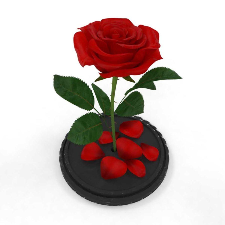 Rode roos in een kolf royalty-free 3d model - Preview no. 6