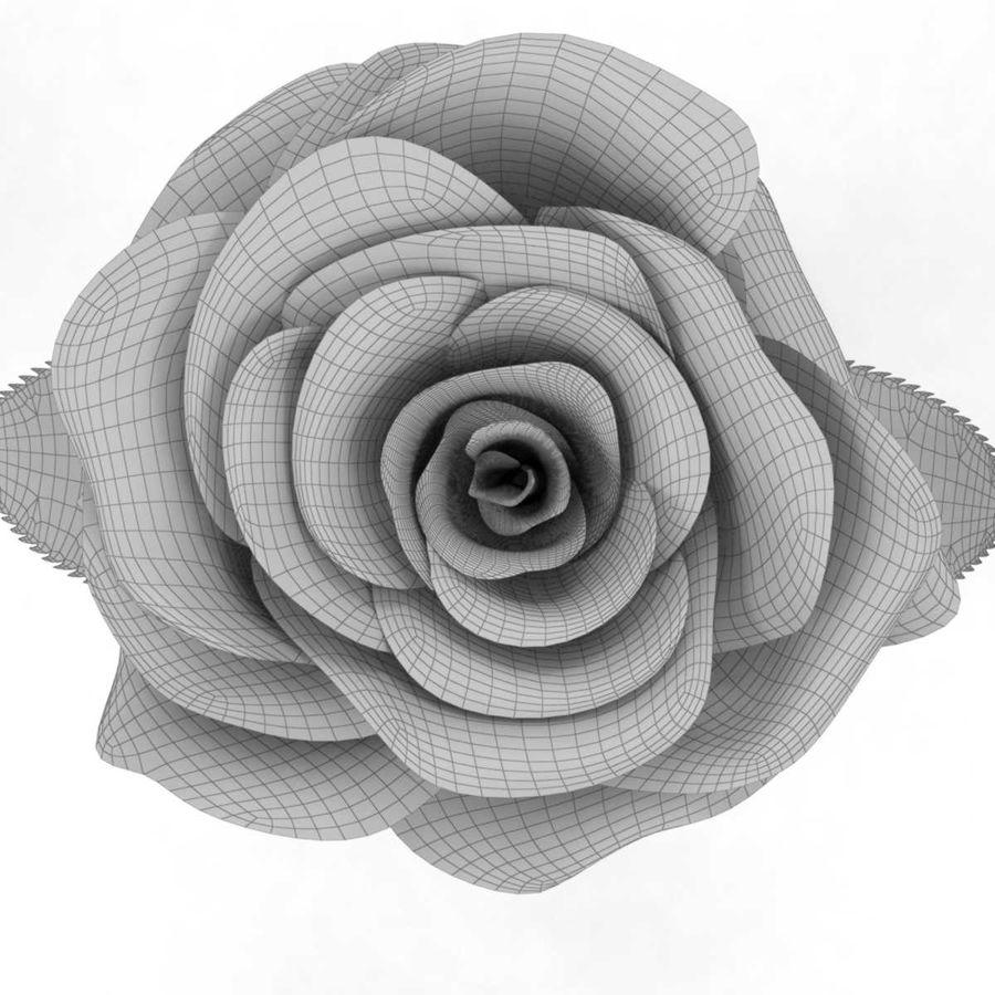 Rode roos in een kolf royalty-free 3d model - Preview no. 11