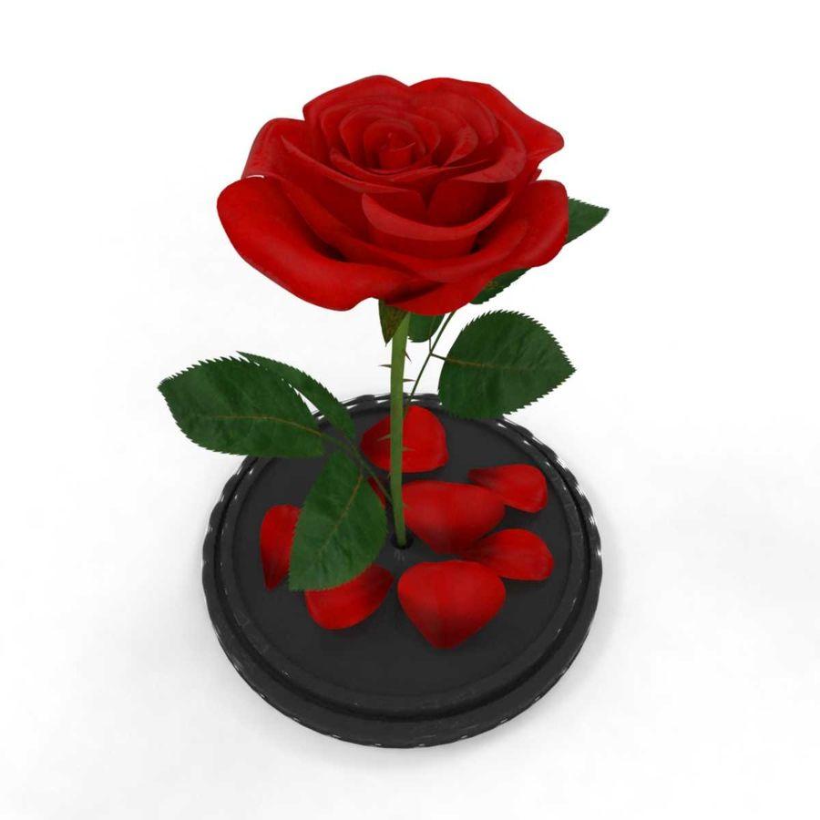 Rode roos in een kolf royalty-free 3d model - Preview no. 5