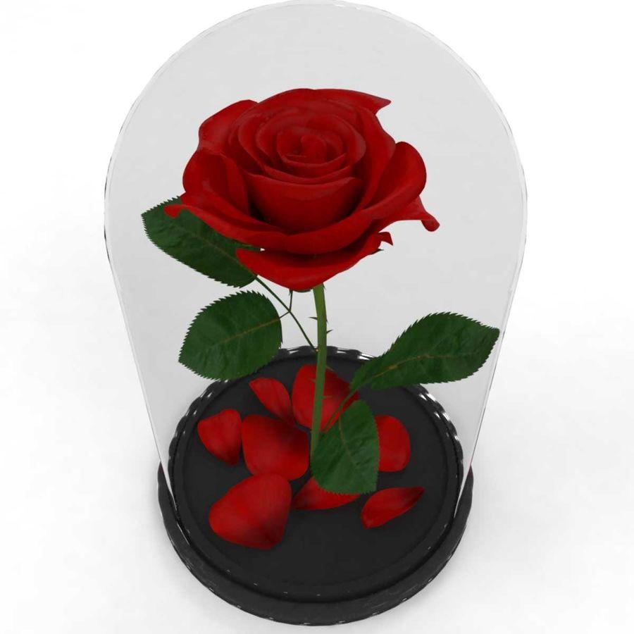 Rode roos in een kolf royalty-free 3d model - Preview no. 4