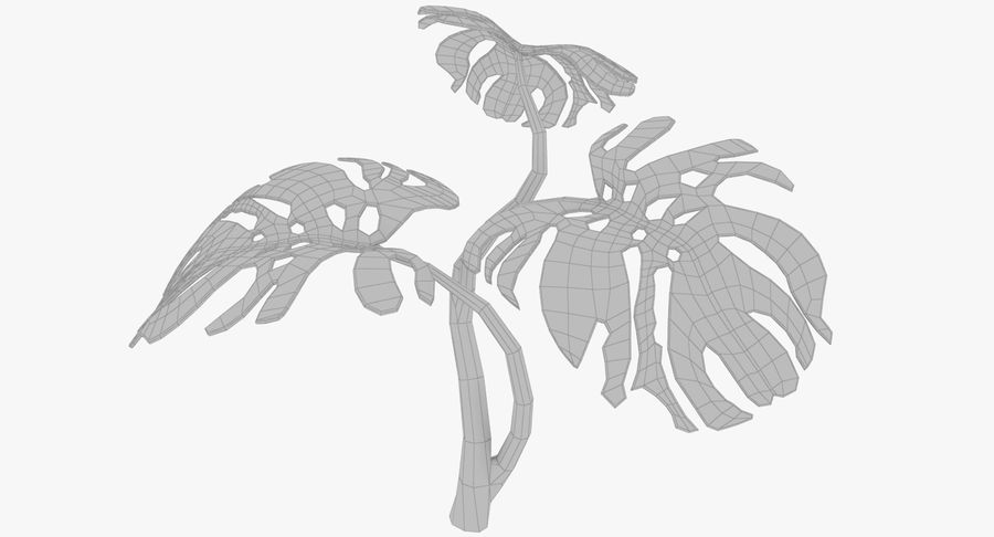 Monstera royalty-free 3d model - Preview no. 10