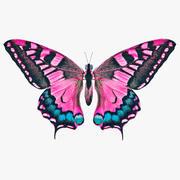 Motyl różowy 3d model