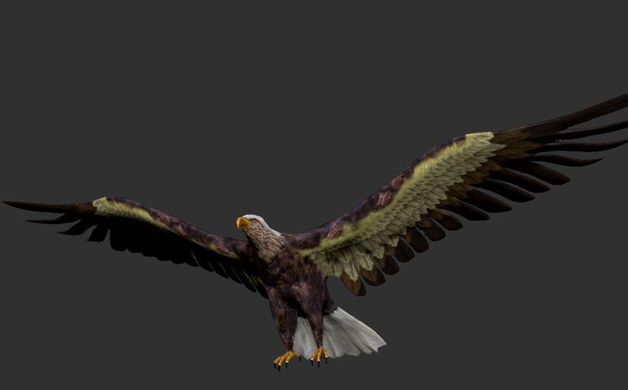 Adler royalty-free 3d model - Preview no. 3