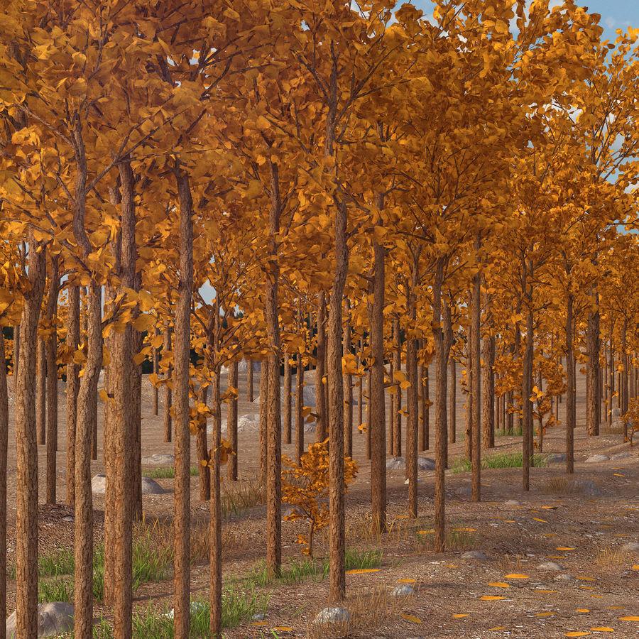 Autumn Landscape royalty-free 3d model - Preview no. 5