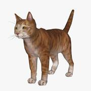 p0017 - gato modelo 3d
