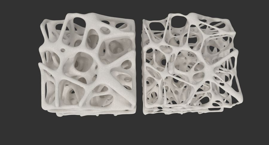 Square Bone Structure royalty-free 3d model - Preview no. 7
