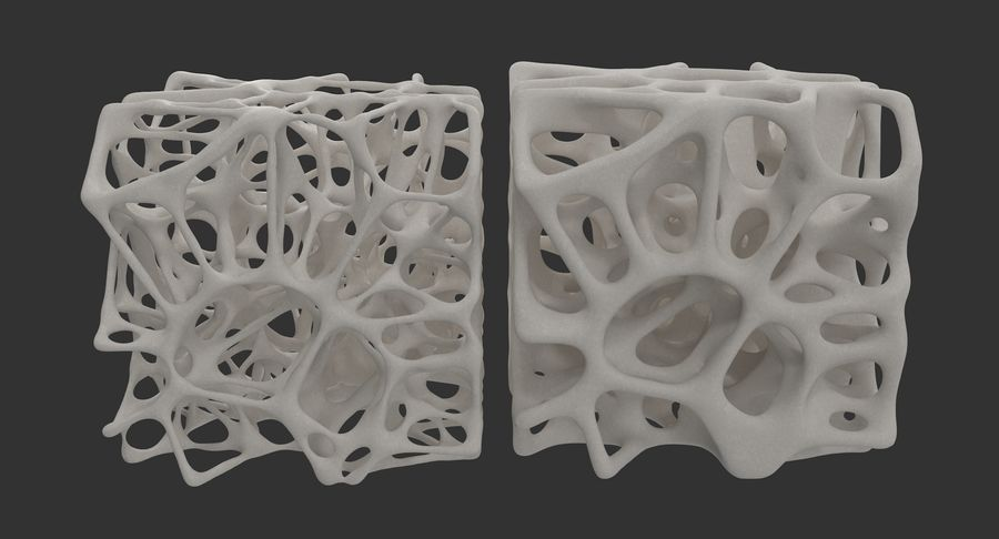 Square Bone Structure royalty-free 3d model - Preview no. 5