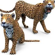 Getuigde en geanimeerde luipaard 3d model