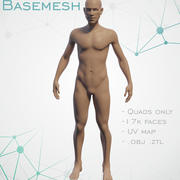 Basemesh mâle 3d model