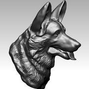 Testa di cane da pastore 3d model