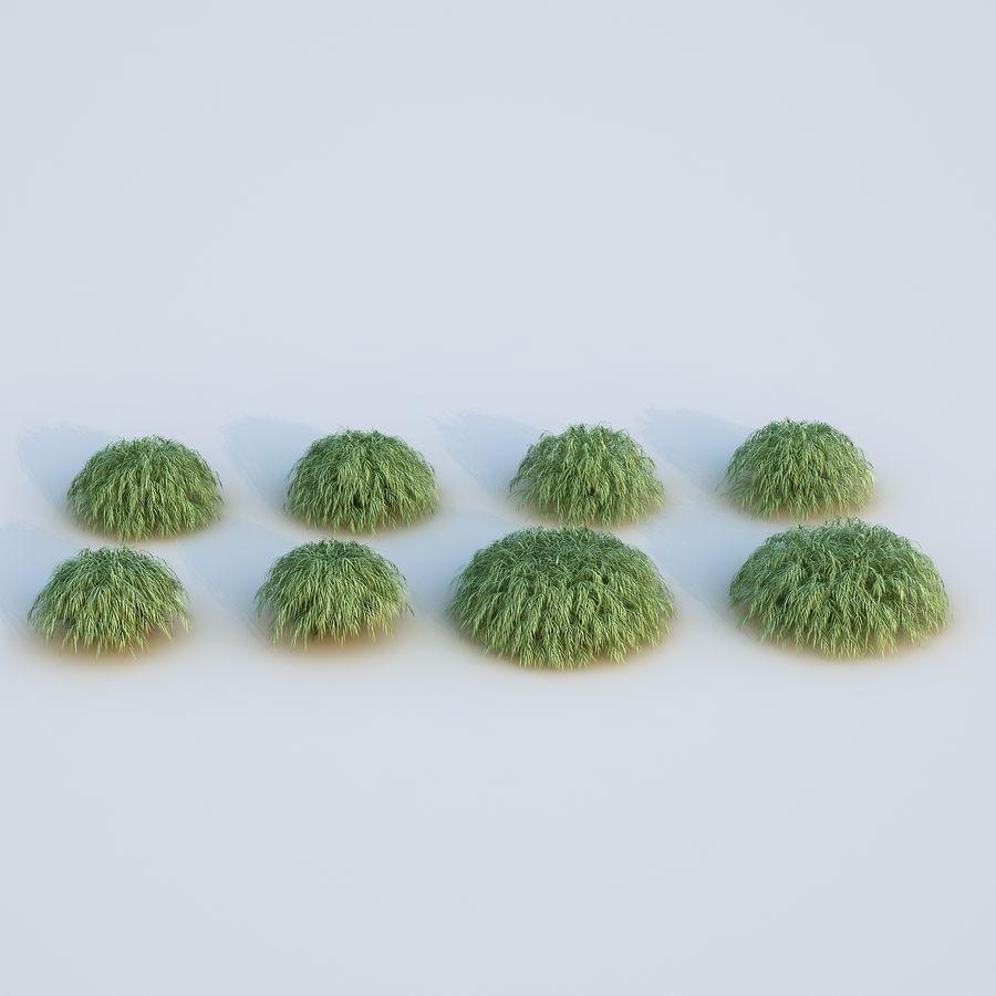 hierba del bosque japonés royalty-free modelo 3d - Preview no. 11