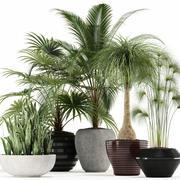 Växtsamling 103 3d model
