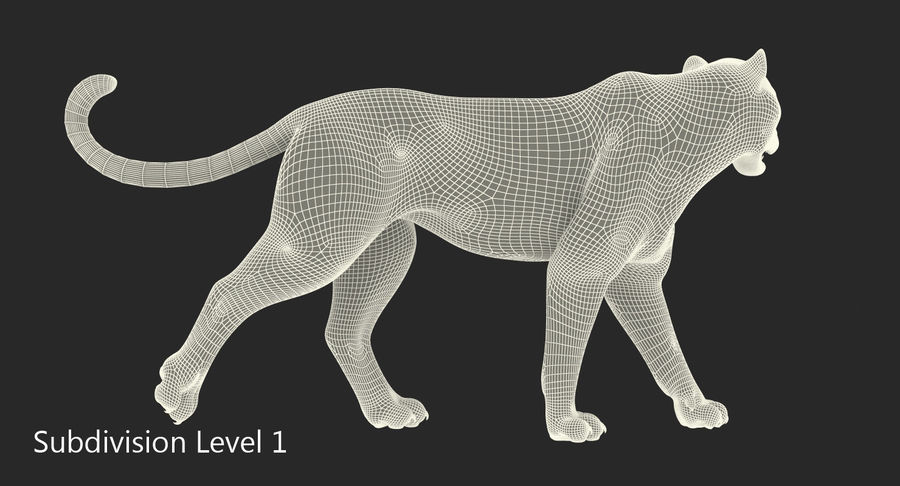 Leopard Walking Pose with Fur royalty-free 3d model - Preview no. 12