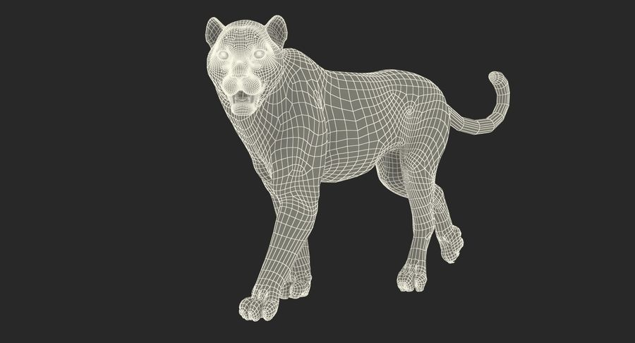 Leopard Walking Pose with Fur royalty-free 3d model - Preview no. 18